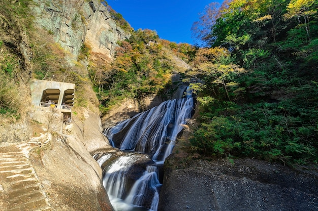 Fukuroda falls in autumn in daigo ,ibaraki prefecture , japan. the river flows through the falls and ultimately joins a major kuji river. the width of the falls is 73 m, while the height reaches 120 m.