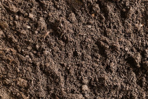 Full frame of fertile soil