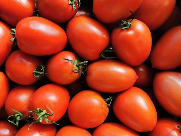 빨간 스페인 토마토의 전체 프레임입니다.