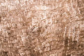 Full frame of wooden textured background