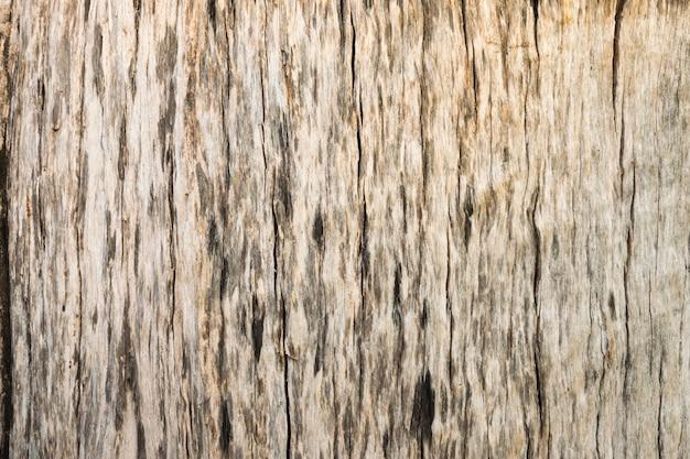 Full frame shot of wooden texture background.