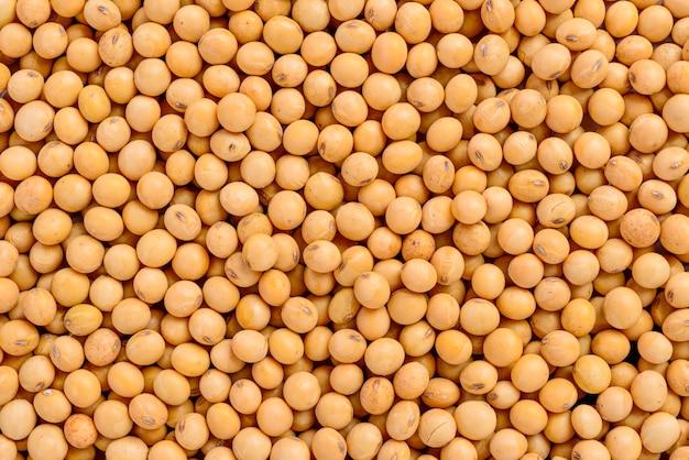 Full frame of soybean