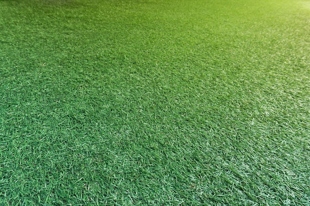 Full green artificial turf frame, orange light at the top corner