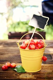 Full iron bucket with ripe pink cherry