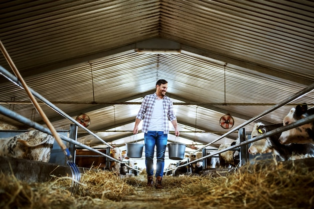 Full length of handsome caucasian farmer in plaid shirt and jeans holding buckets in hands with animal food. stable interior.