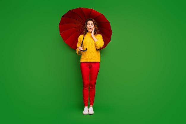Полная длина фото взволнованной женщины, держащей большой яркий зонтик, прогулка в дождливый теплый весенний день, погода, рука на щеке, желтый свитер, красные брюки, туфли, изолированные на стене зеленого цвета