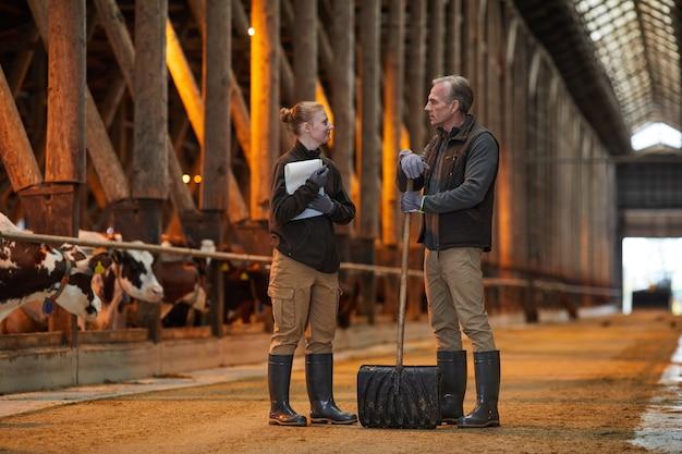 암소 창고에 서서 가족 농장에서 일하는 동안 이야기하는 아버지와 딸의 전체 길이 초상화, 복사 공간