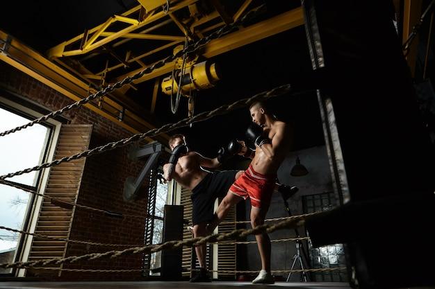 現代のジムのボクシングのリングの内側でスパーリングをしている2人の男性のキックボクサーの全身像:黒いズボンをはいた男性が赤いショートパンツで相手を蹴っている。トレーニング、トレーニング、格闘技、キックボクシングのコンセプト