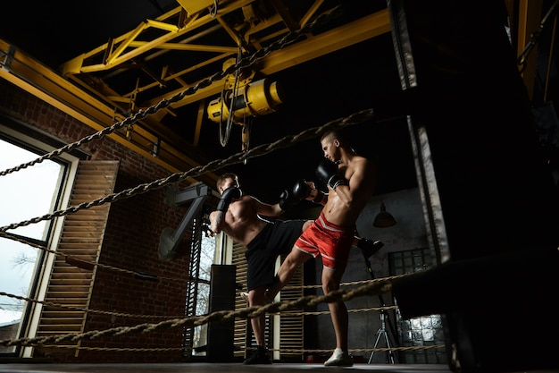 Full length portrait of two male kickboxers sparring inside boxing ring in modern gym: man in black trousers kicking his opponent in red shorts. training, workout, martial arts and kickboxing concept