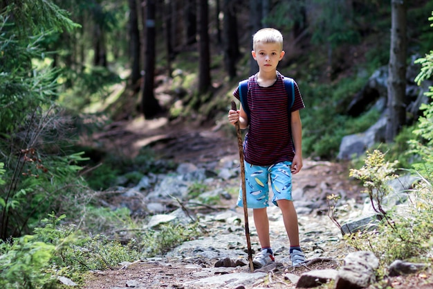 Full-length portrait of young child boy with hikers backpack and stick traveling alone through lit by bright sun mountain dense pine forest on warm summer day. tourism and active lifestyle concept.