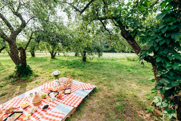 신선한 과일과 잔에 신선한 레모네이드를 깔고 격자 무늬 천에 누워 여름 휴가를 위한 건강한 피크닉의 전체 길이 보기. 본 식욕 개념