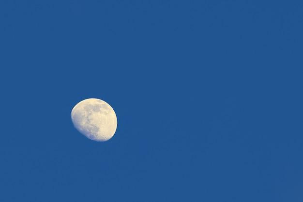 복사 공간이 있는 맑고 짙은 푸른 저녁 하늘의 보름달