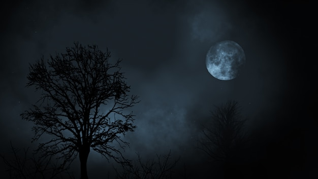 Full moon at night rising between evergreen tree forest with clouds