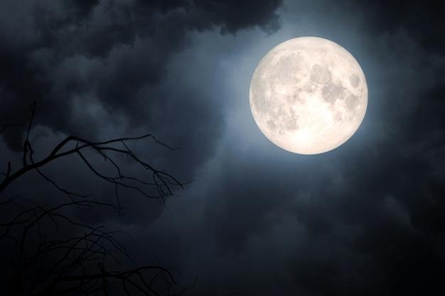 Moon Vectors, Photos And PSD Files