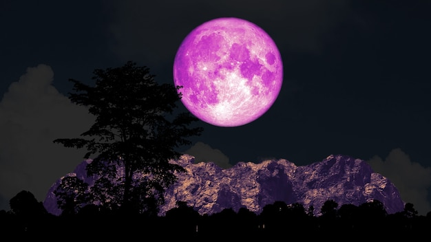 Full pink moon and tree on the silhouette mountain on the night sky, elements of this image furnished by nasa