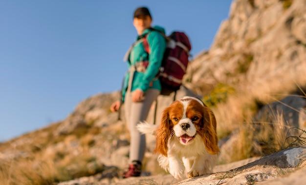 Полный снимок размыто женщина с собакой