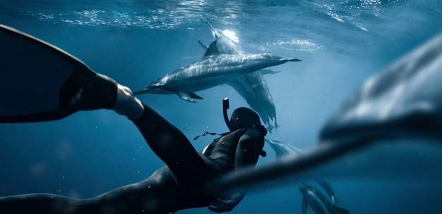 Full shot swimming with dolphins