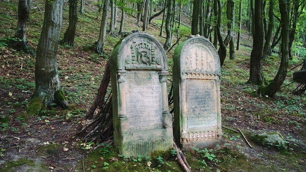 Full shot two tombstones in old cemetery. headstones in jewish