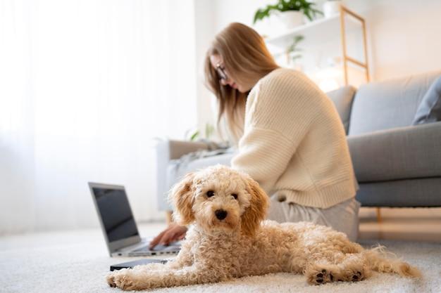 Donna e cane a tutto campo sul pavimento