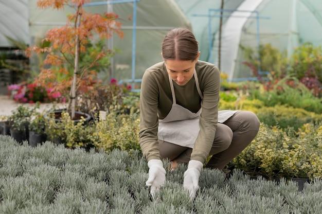 식물을 보고 있는 전체 샷 여자