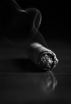 Fuming havana cigar