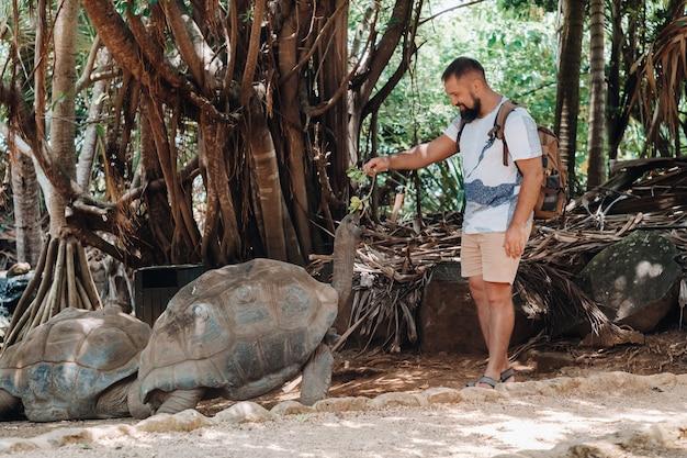 モーリシャスでの楽しい家族向けエンターテイメント。モーリシャス島の動物園で巨大なカメに餌をやる観光客。