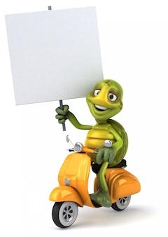 Fun turtle animation