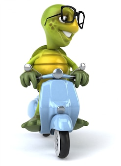 Fun turtle character isolated