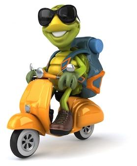 Fun turtle traveling animation