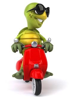 Забавная черепаха