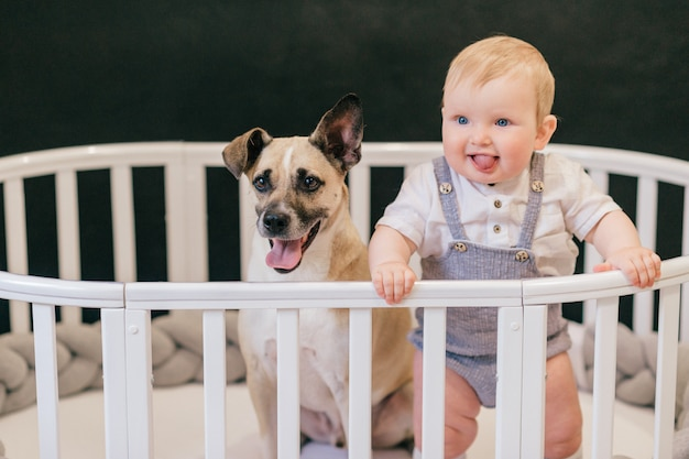 Funny baby boy standing in crib with cute puppy