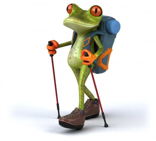 Funny backpacker frog