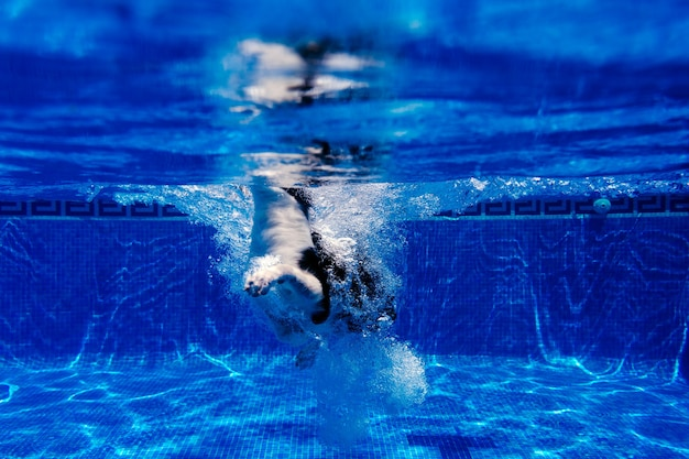 Funny border collie dog standing in swimming pool during day time, summer time and vacation concept. underwater view