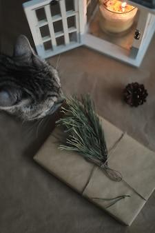 クラフト紙キャンドル松の小枝とコーンの上面図で面白い猫とクリスマスプレゼント
