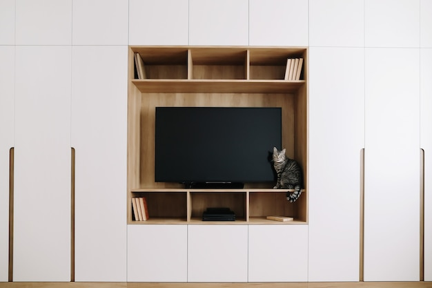 Funny cat in a living room interior with tv and a wardrobe