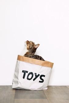 Забавный кот сидит в бумажной упаковке с надписью игрушки. веселые питомцы играют дома.