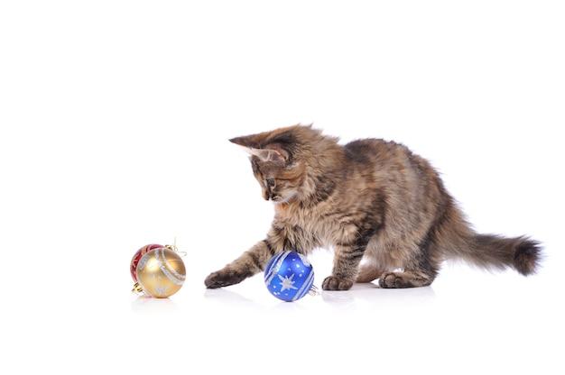 Забавный кот с елочными игрушками, изолированные на белом фоне