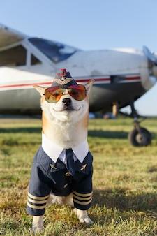 Смешные крупным планом фото улыбающейся собаки сиба-ину в костюме пилота рядом с самолетом