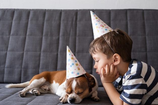 就学前の男の子と面白いかわいいチワワ犬。パーティーハットの誕生日の犬。誕生日おめでとう。