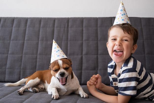 就学前の男の子と面白いかわいい幸せなチワワ犬。パーティーハットの誕生日の犬。悲鳴。誕生日おめでとう。