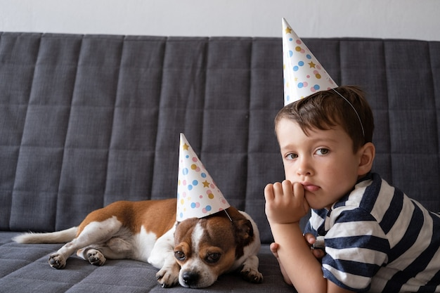 就学前の男の子と面白いかわいい悲しいチワワ犬。パーティーハットの誕生日の犬。誕生日おめでとう。