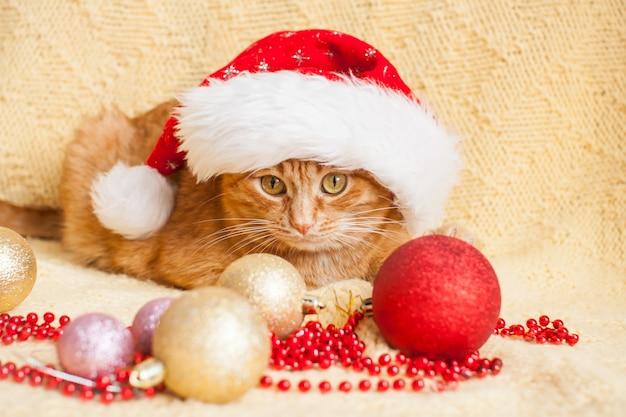 サンタクロースのクリスマス帽子の面白い太った生姜猫は、元旦に囲まれた黄色い毛布の上にあります