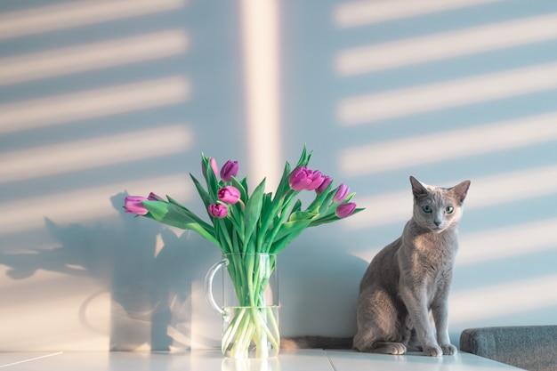 Забавный серый котенок позирует на столе с букетом тюльпанов в стеклянной вазе.