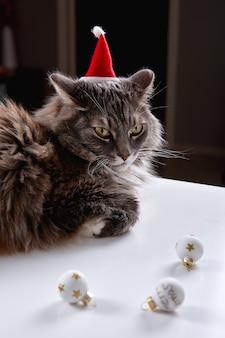 面白い灰色の猫はクリスマスのおもちゃで遊んでいます
