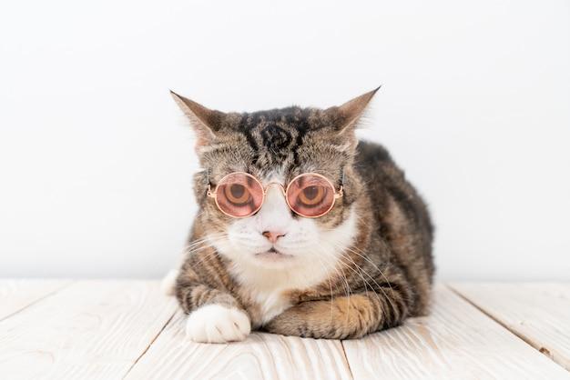Забавный серый кот с модными очками
