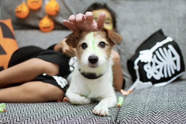 Смешная собака джек рассел празднует хэллоуин, играя со своим ребенком-владельцем на диване