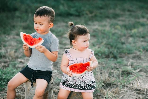 Веселые дети едят арбуз. брат и сестра на свежем воздухе, сидя на пнях