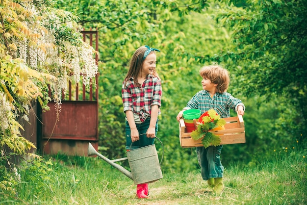 재미있는 어린이 농부들은 상자를 들고 행복한 발렌타인 데이에 물을 줄 수 있습니다.