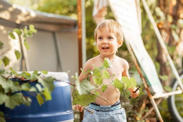楽しんで裏庭の未就学児の子供で遊ぶ面白い男の子