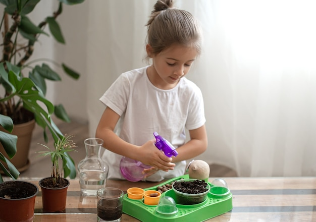 Funny little girl gardener with plants in the room at home, watering and caring for indoor plants, transplants flowers.